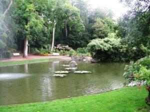 jardin-lac